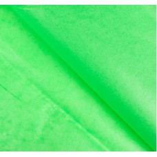 Бумага упаковочная тишью, зеленая, 50 х 66 см, 10 шт. в упаковке