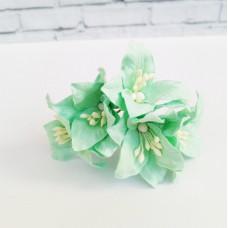 Декор для скрапбукинга Лилия, 3 см, цвет мятный, 1 шт.