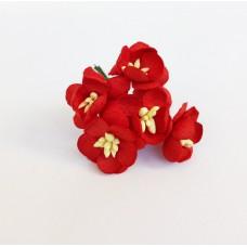 Цветок Вишни, цвет красный 2,5 см, 5 шт.