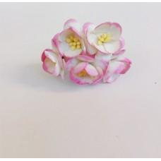 Цветок Вишни, цвет белый с розовой каймой по краю 2,5 см, 5 шт.