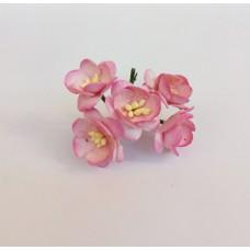 Цветок Вишни, цвет розовый с темно-розовым краем 2,5 см, 5 шт.