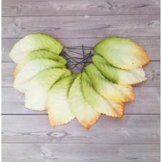 Листья желто-зеленые с оранжевым краем 6х4 см., 10 шт.