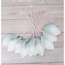 Листья бело-серые 3,5х2 см., 10 шт.