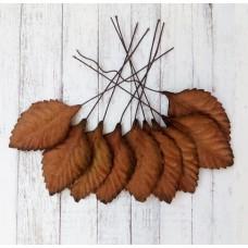 Листья коричневые 4,5х2,5 см., 10 шт.