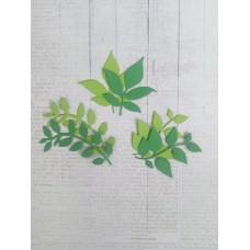 """Набор """"Листики"""" 6 шт. Цвет темно-зеленый и салатовый."""